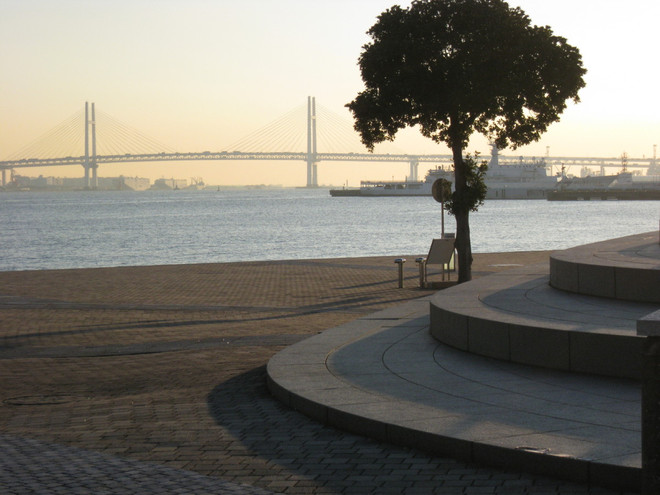 Yokohama22
