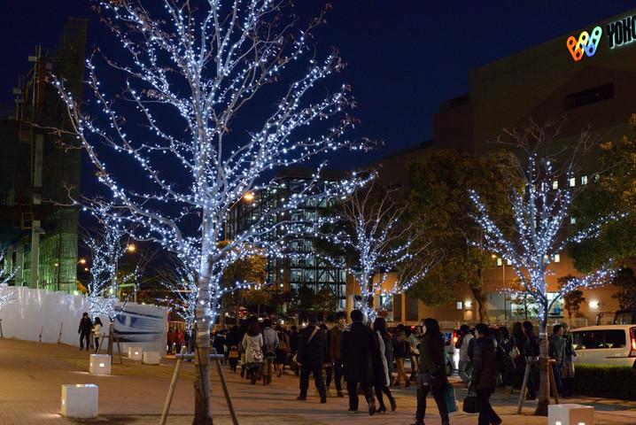 Yokohama7