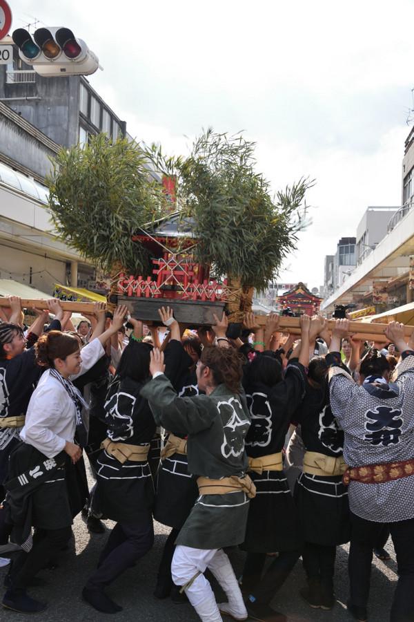 Yoshiwaragion_00003